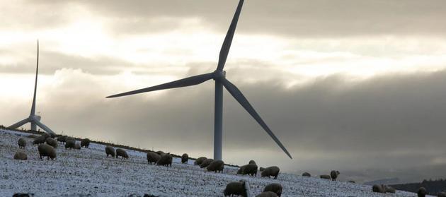 回顾2020:评估目前的气候问题现状