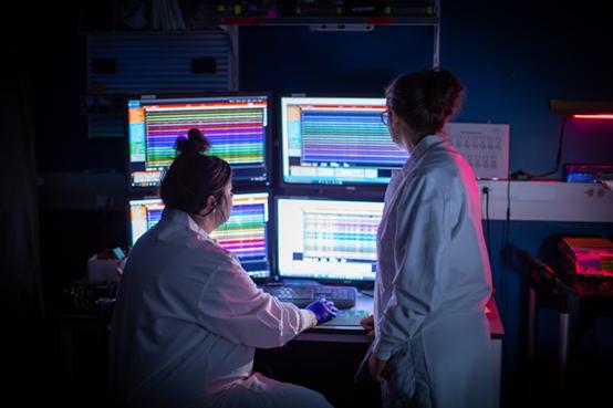 在华盛顿州西雅图的艾伦脑科学研究所,研究人员使用神经像素探针同时记录了数百个神经元的活动