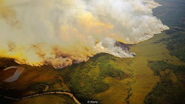 火警使大批本来锁正在北极丛林、降叶层战泥土中的碳开释到年夜气中