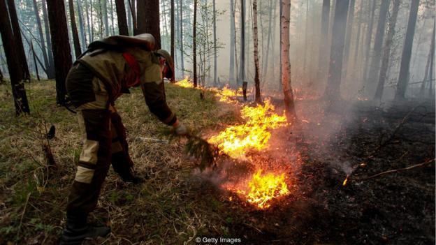 西伯利亚的丛林年夜水曾经要挟到四周的假寓面,浓烟战烟灰洋溢着整片地域
