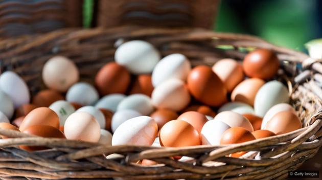 鸡蛋是维生素B12的主要来源,而这正是纯素食主义者所缺乏的一种维生素