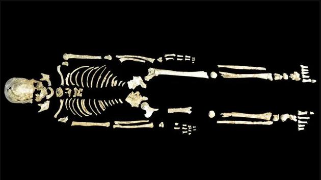 南北方人差異在哪裡 古基因組學揭示歷史