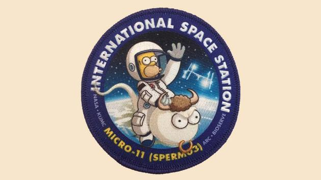 NASA为什么要将精子送入太空?NASA宇航员精子