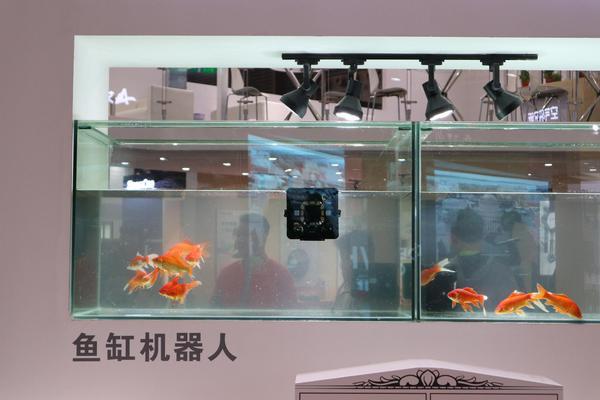 AWE 2019?#26680;?#27874;尔带来神奇的鱼缸机器人