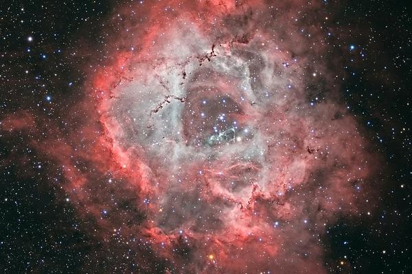 英国60岁老太自家后院拍出5000光年外玫瑰星云图