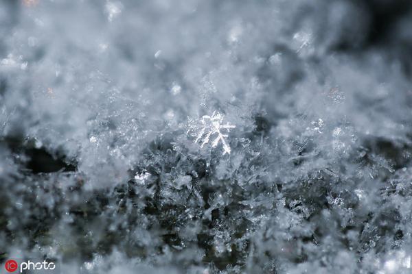 2019初雪如期至 北京满城银