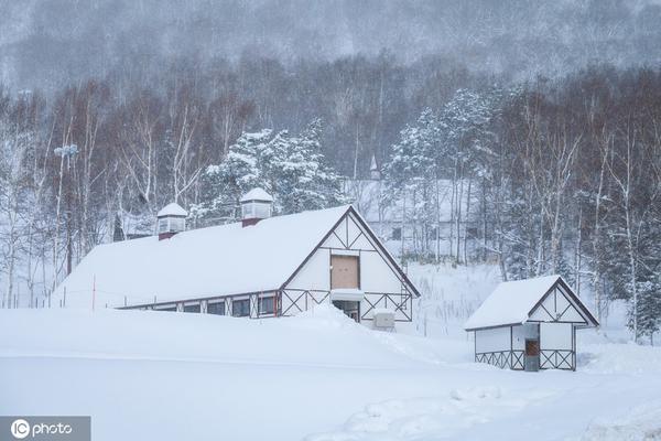 童话里的风景!日本北海道札幌小樽自然雪景