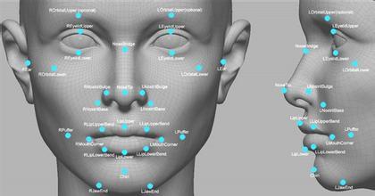 人脸识别技术。(新浪科技配图)