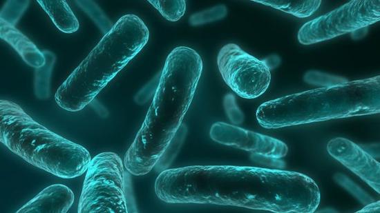 人类将进入后抗生素时代:普通感染或无药可治