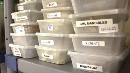 这些密封箱里装满了各种骨骼,箱子外都标有标签。