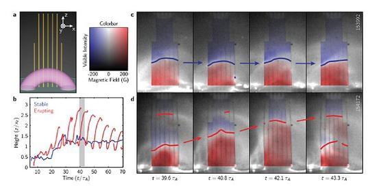 """美国能源部普林斯顿等离子体物理学实验室的物理学家利用磁场重联实验(MRX)对等离子体环的两种发展过程——一是形成之后崩塌(图中上方分图),二是形成之后断裂(图中下方分图)——进行追踪。研究人员认为,等离子体环的稳定性是由一种""""指引性磁场""""的强度决定的。"""