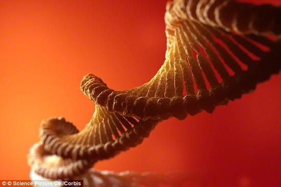 """塞思·肖斯塔克认为,第一个改变是我们最终能在分子水平上理解生物学。这种改变将使人类能治疗所有的疾病,并由此进入一个""""设计婴儿""""的时代。"""