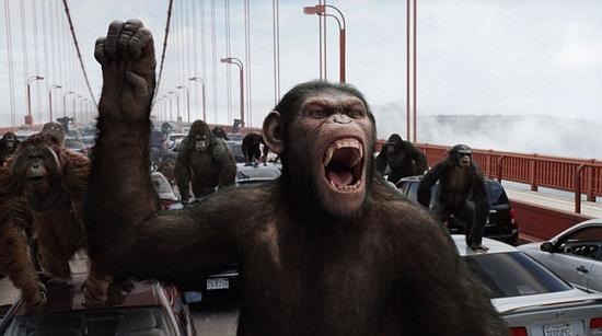 在系列电影《猩球崛起》中,我们的近亲在获得足够的时间和空间之后,发展出了语言能力,并适应了我们的技术。不过,类人猿社会很难继承人类对地球的统治,因为它们很可能在人类之前就灭绝了。