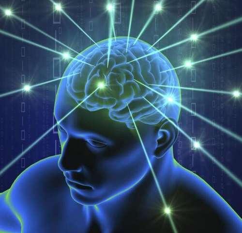 研究者发现脑电波可以利用较弱的电场进行传递