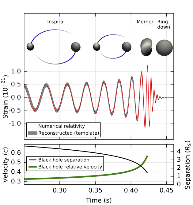 对于信号GW150914的一些关键分析结果,将重建的引力波波形信号与根据广义相对论得到的最佳理论匹配波形进行比对,覆盖该事件的三个不同阶段:相互绕转接近、合并和再次恢复平静。同时也标示出了这两个黑洞的相互间隔和速度,以及随着合并进程的进行两者发生的变化