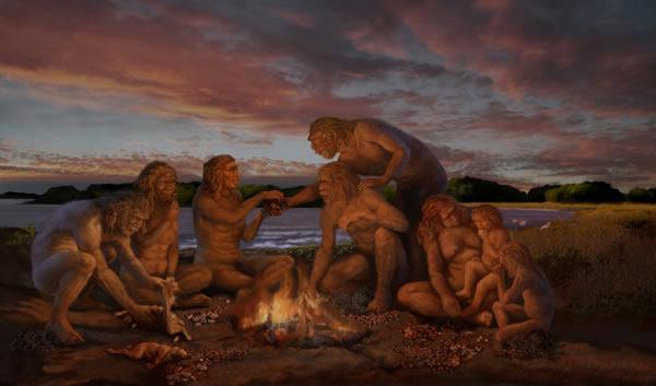 """研究称人类祖先性行为大胆 曾有四段""""混血期"""""""