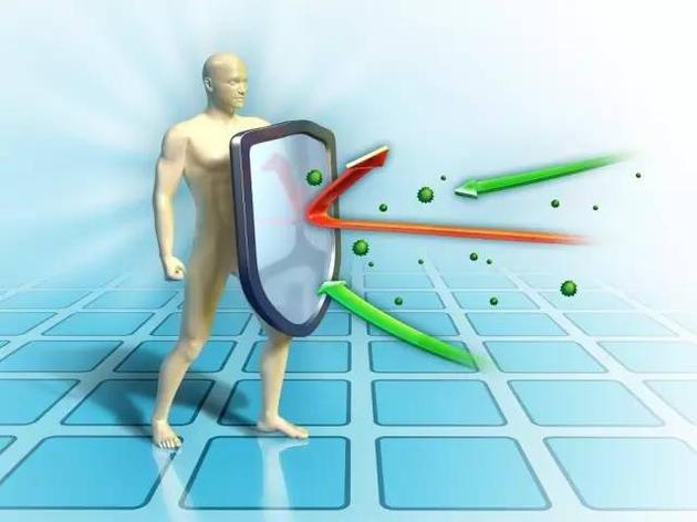 增强抗肿瘤的免疫系统可使人体免受攻击