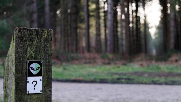 """今天,我们可以在""""伦德尔沙姆森林""""(Rendlesham Forest)公园内的一条""""UFO路""""来追溯当年的大规模UFO目击事件"""