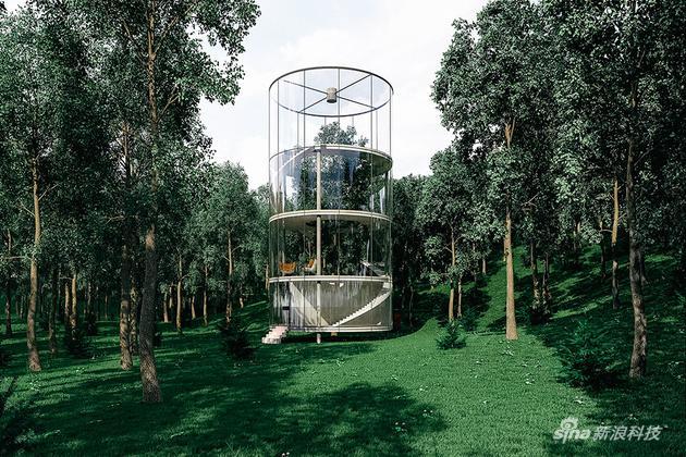 林中仙境:玻璃树屋|螺旋|木头|树屋_新浪科技_新浪网