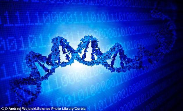 """科学家通过计算机编码""""黑入""""活体细胞改变功能"""