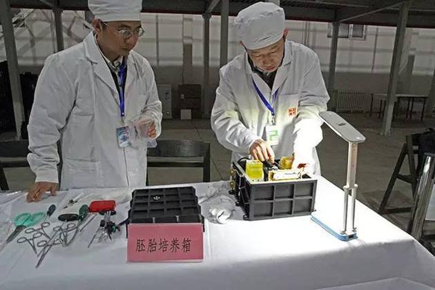 科研人员将胚胎实验装置从实践十号卫星回收舱内取出。图片来源:本文作者
