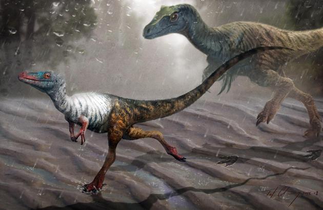 中国发现送彩金的娱乐平台大全最小恐龙足迹:只有2厘米体长麻雀大小