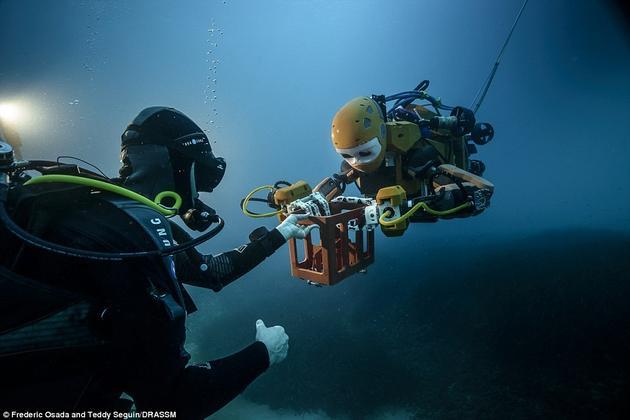 哈提卜教授利用一组操控杆来控制OceanOne机器人,先是让它在花瓶上方徘徊,感受花瓶的轮廓和重量,然后伸出一根手指,将花瓶勾住。这一系列动作是在力传感器的帮助下实现的。传感器可以把触觉反馈传递给控制员。在勾住花瓶之后,哈提卜让机器人将花瓶轻轻地放入一个篮子中,然后将它提出了水面