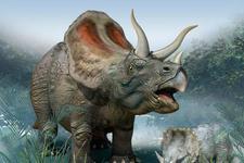 还原6600万年前恐龙灭绝:直径10公里小行星撞击地球