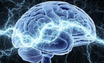 """脑科学展开""""大国之争""""。(新浪科技配图)"""