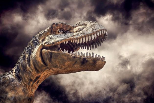 有没有可能克隆一只恐龙?人类从未获得过恐龙的DNA