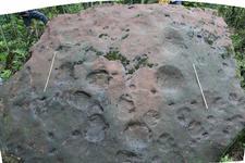 科学家发现世界级恐龙足迹群:新物种种名赠科幻作家刘慈欣