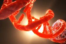 科学家或解开遗传机制数十亿年不变之谜:DNA本身存在限制