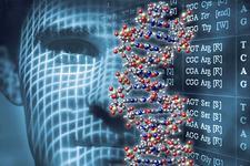 人工合成基因组概念遭批评:或招致基因军备竞赛