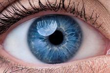 失明患者的福音!科学家首次用皮肤干细胞恢复视力