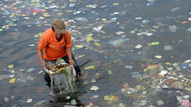 据估计,全世界每年的塑料生产量大约为3亿吨,其中一大部分最终进入了海洋