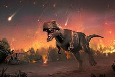 最新研究认为恐龙灭绝后地球哺乳动物出现进化大爆发