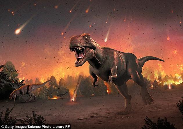 自恐龙灭绝以后,地球上哺乳动物的进化呈现爆发式发展,物种进化速度要三倍于恐龙灭绝之前,在短短1000万年内各哺乳动物物种已经填补了因恐龙灭绝而留下的缺口。