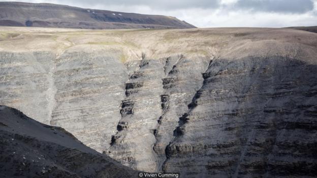 加拿大巴芬岛的岩石保留着有性繁殖的最早证据