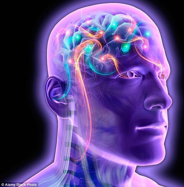 我们的大脑拥有大约860亿个神经元,它们之间拥有数以万亿计的连接。为了数字化地复制思维,我们必须绘制出每一个这样的连接,而这远远超出了人类目前的能力。