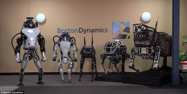 """图为波士顿动力公司的机器人家族。最右侧为""""大狗""""四足机器人,最左侧为Atlas类人型机器人。左数第二是该公司最新研发的Atlas机器人,身高比之前的要矮一些。人们认为它就是在该公司总部附近的森林中接受测试的机器人。"""