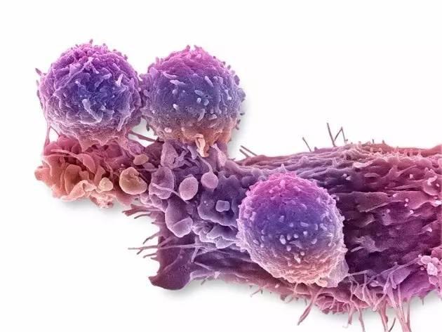 全球首例基因编辑人体临床试验:将在中国进行