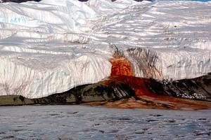 南极有个血瀑布,这是怎么回事?或暗藏地外生命秘密