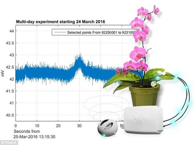Vivent利用了一种手机科技,研发出了这款低成本设备。该公司表示,这意味着任何人都能用得起它,对自己的植物进行监控。