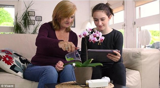瓦尔布里奇博士希望,如果人们能够监控自己的植物发出的信号,我们便能了解到更多与植物健康有关的信息。