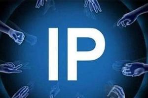 疯狂的IP?——三问网络文学版权影视化热潮