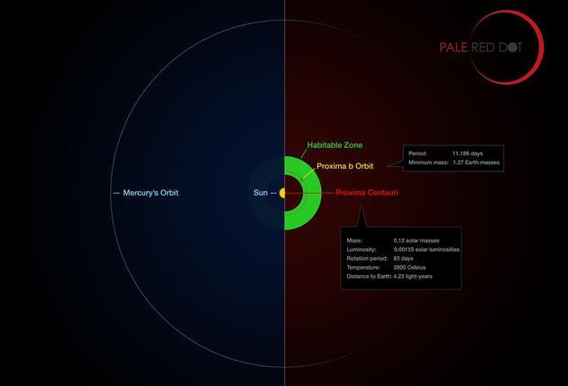 这张信息图将比邻星周围新发现的行星轨道与太阳系的相同区域进行比较。可以看到比邻星b的运行轨道远比水星到太阳之间距离近得多<b