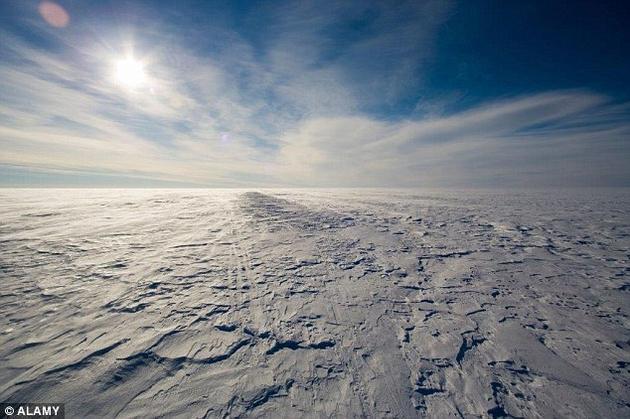 受到气候变化的影响,北极地区的冻土带开始融解,使数以吨计的象牙露出地面。
