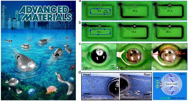 自主型液态金属机器所展示的人工软体动物、实物马达及其驱动流体情形