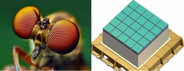 """左:昆虫的复眼(图片来自网络);右:""""天极""""望远镜的探测器"""