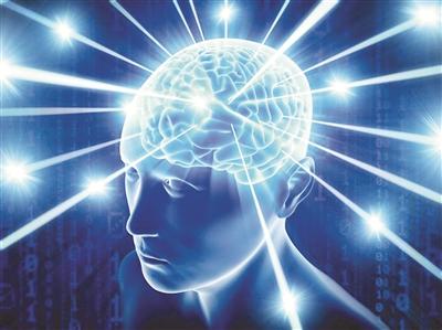 人脑研究有清晰导航图 科学家绘数字版人脑图谱